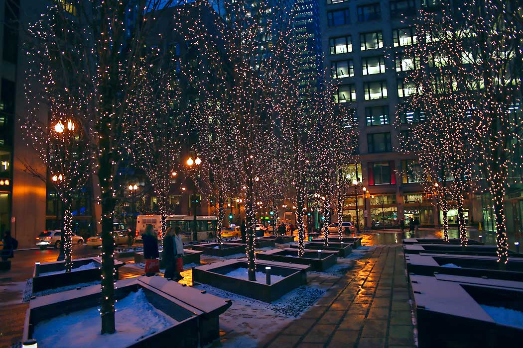 miniature lights festoon trees in downtown chicago at night