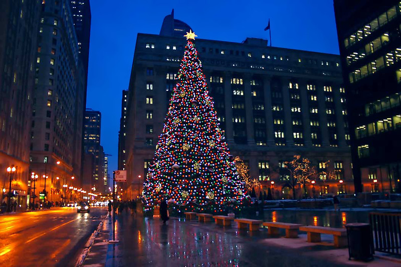 Giant Christmas tree in Daley Plaza in downtown Chicago