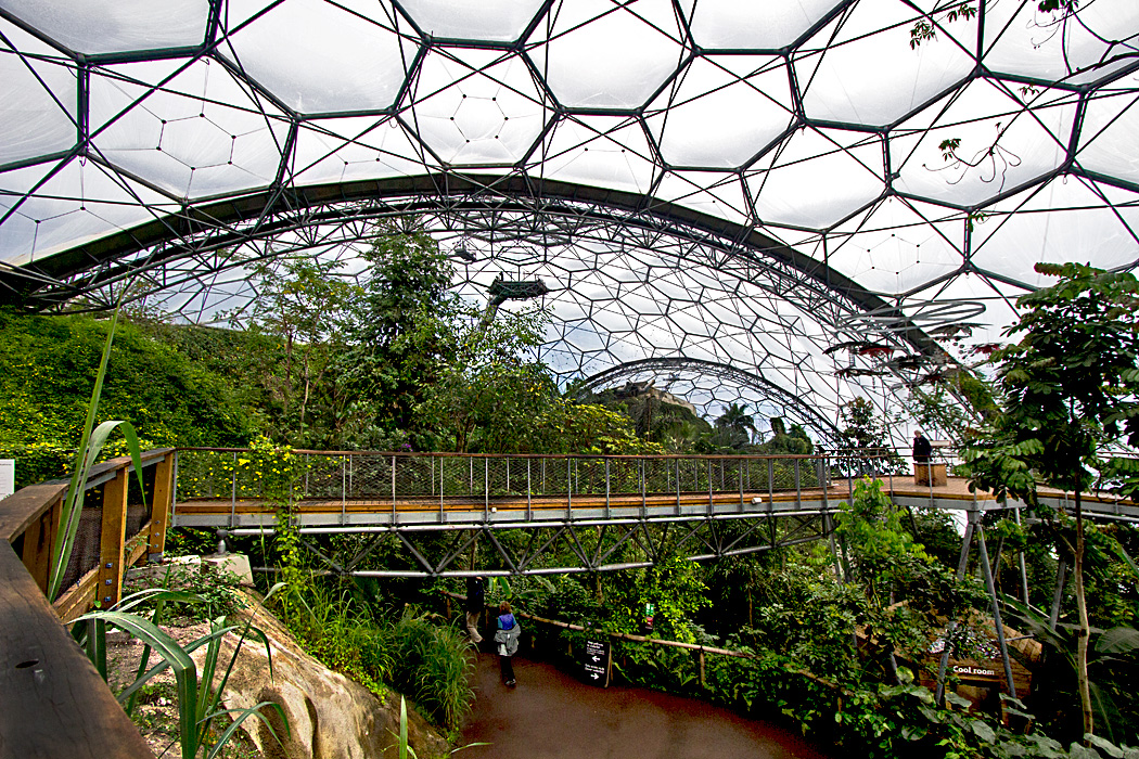 Canopy Walkway in the Rainforest Biome at Eden Project in Cornwall, England